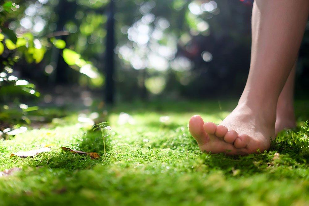 숲, 바람, 하늘이 주는 평안<br/>DFW에서 자연을 즐길 수 있는 곳